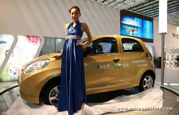 Electric Chery Riich M1