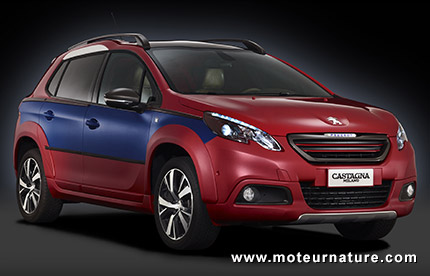 Peugeot 2008 by Castagna